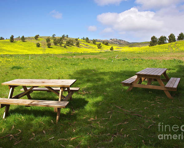 Beams Poster featuring the photograph Picnic Tables by Carlos Caetano