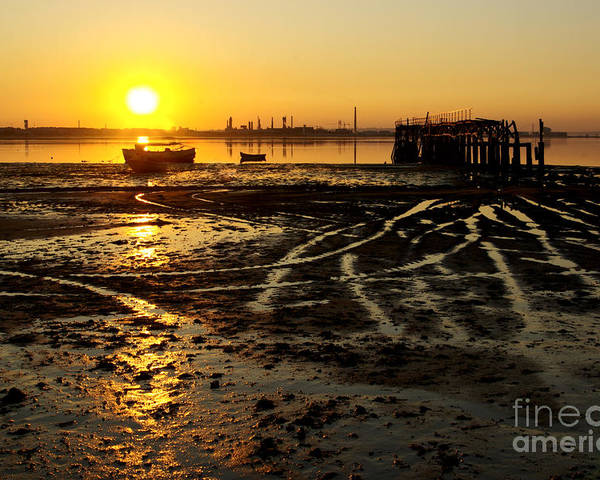 Algae Poster featuring the photograph Pier At Sunset by Carlos Caetano