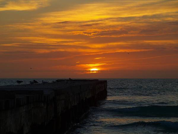 Sunset Poster featuring the photograph Pier Sunset by Judy Waller