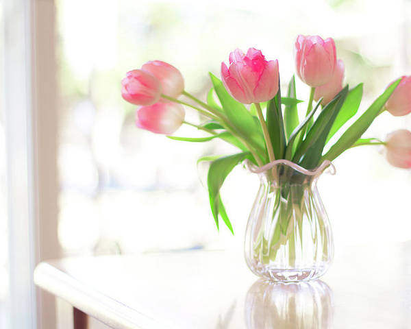Horizontal Poster featuring the photograph Pink Glass Vase Of Pink Tulips In Window by Jessica Holden Photography