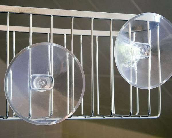 Equipment Poster featuring the photograph Plastic Suction Cups by Sheila Terry
