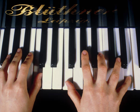 Piano Poster featuring the photograph Playing The Piano. by Damien Lovegrove
