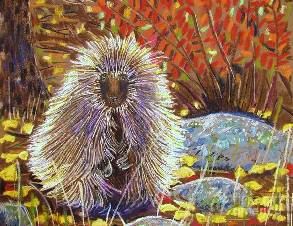 Porcupine Poster featuring the pastel Porcupine On The Trail by Harriet Peck Taylor