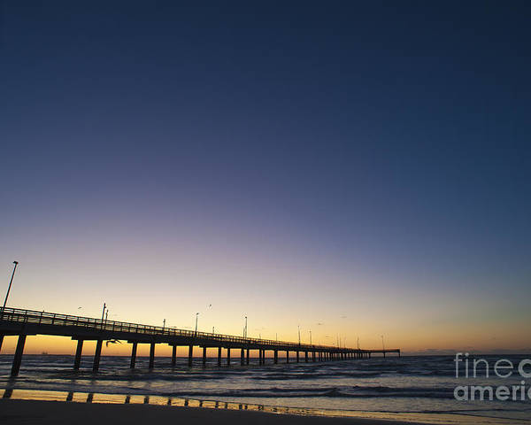 Gulf Of Mexico Poster featuring the photograph Port Aransas Texas by Andre Babiak