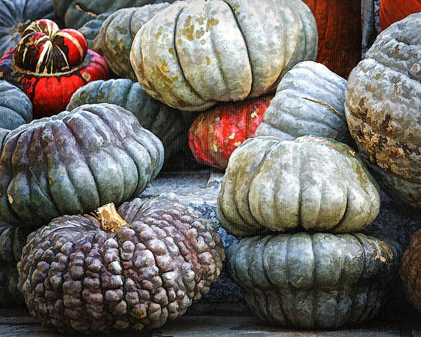 Autumn Poster featuring the photograph Pumpkin Pile II by Joan Carroll