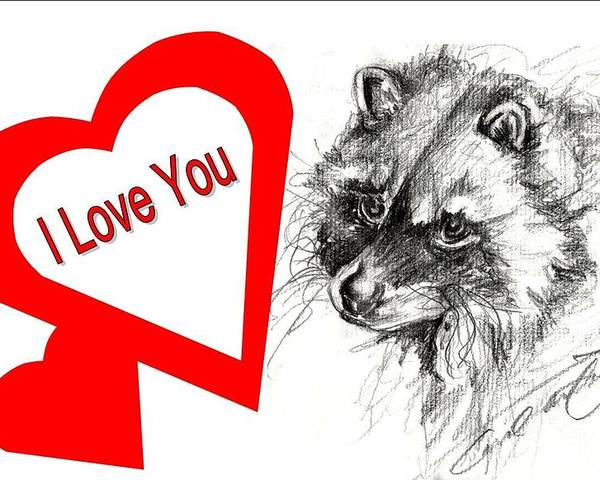 Raccoon Poster featuring the drawing Puppy Love by Carol Allen Anfinsen