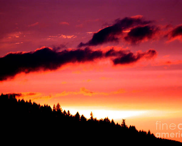 Sky Poster featuring the photograph Purple Haze by Nick Gustafson