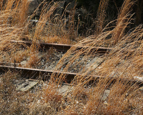 Railroad Photography Poster featuring the photograph Rails Retired by Theresa Johnson