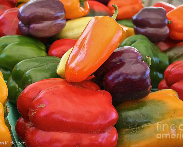 Peppers Poster featuring the photograph Rainbow Bells by Susan Herber