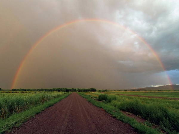 Horizontal Poster featuring the photograph Rainbow by Pat Gaines