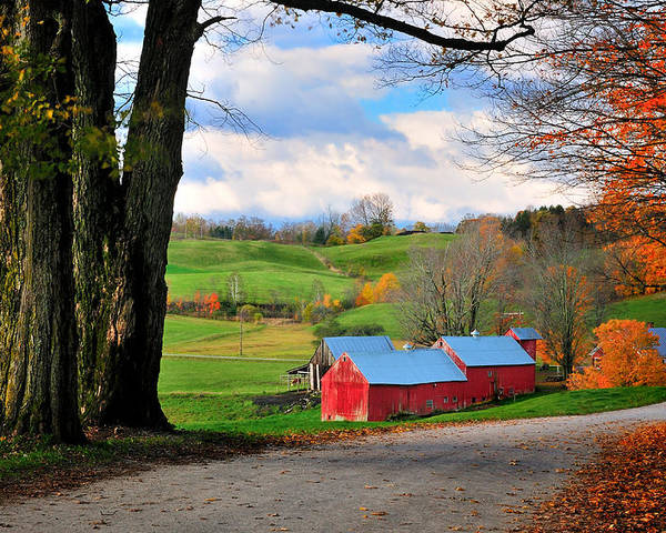 Jenne Farm Poster featuring the photograph Reading Vermont - Jenne Road by Thomas Schoeller