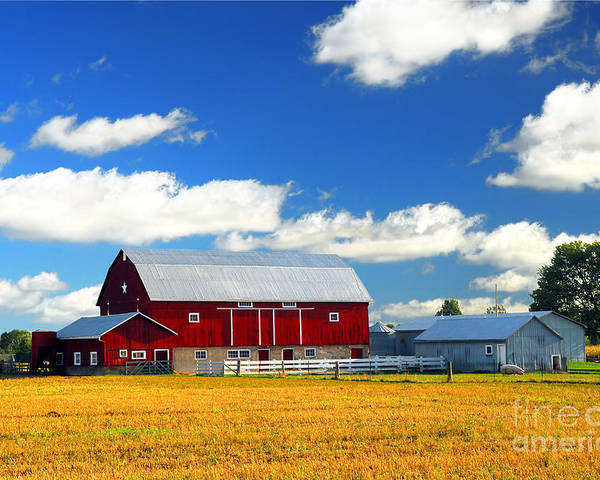 Landscape Poster featuring the photograph Red Barn by Elena Elisseeva
