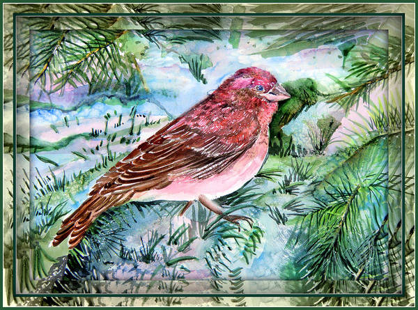 Original Watercolor Poster featuring the painting Red Finch by Mindy Newman