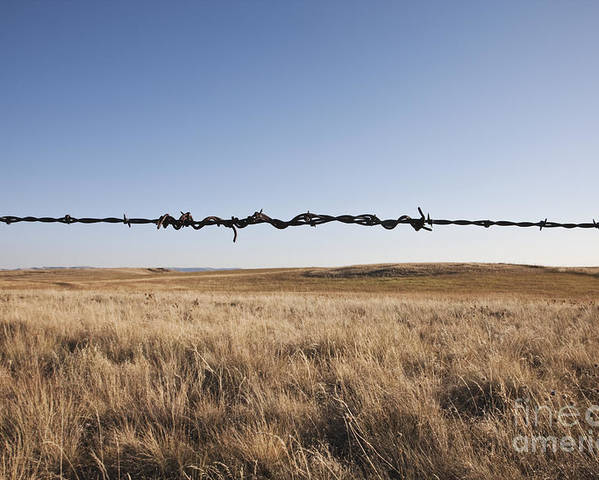Autumn Poster featuring the photograph Repaired Strand Of Barbed Wire by Jetta Productions, Inc