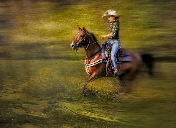 Horse Poster featuring the photograph Riding Thru The Meadow by Susan Candelario