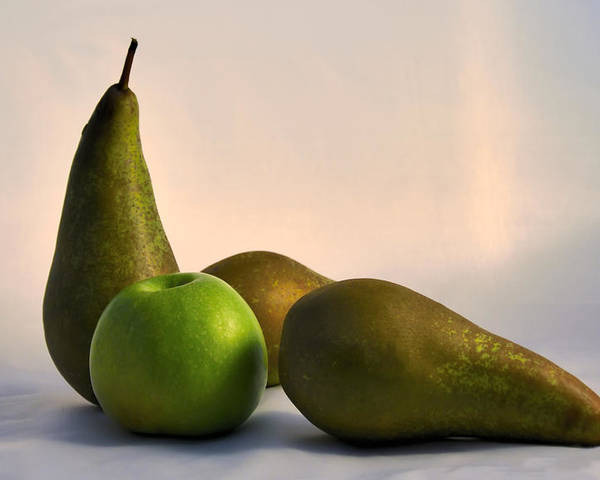 Healthy Poster featuring the photograph Ripe Pears by Vladimir Abramovich