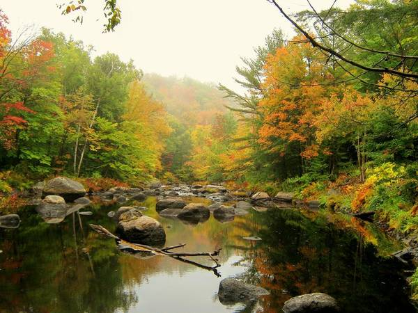 Nh Poster featuring the photograph River Reflections by Wayne Toutaint