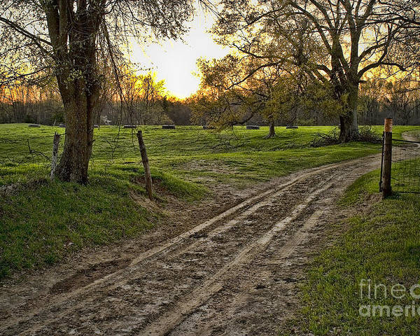 Farm House Poster featuring the photograph Road Less Traveled by Cris Hayes