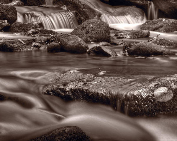 Roaring Poster featuring the photograph Roaring Fork Great Smokey Mountains Bw by Steve Gadomski
