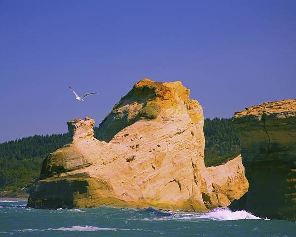 Cape Kiwanda Poster featuring the photograph Rocky Coast Of Cape Kiwanda State by Craig Tuttle