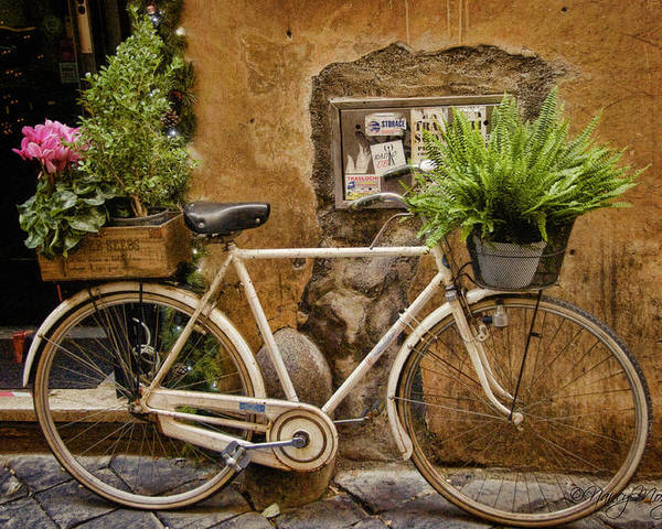 Bike Poster featuring the photograph Roman Delivery by Nancy Morgantini