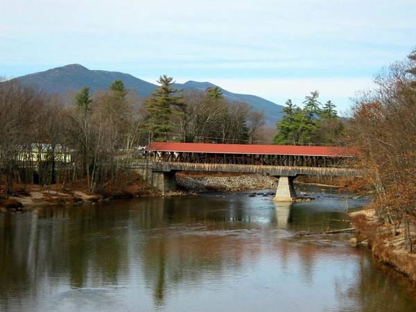 Nh Poster featuring the photograph Saco River Covered Bridge by Wayne Toutaint