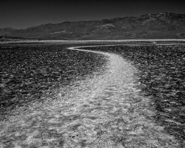 Badwater Poster featuring the photograph Salt Road by Matt Trimble