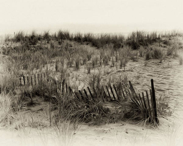 Sand Dune In Sepia Poster featuring the photograph Sand Dune In Sepia by Bill Cannon