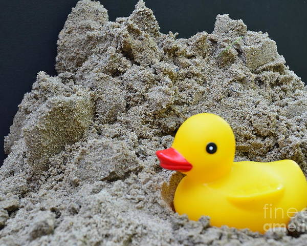 Sand Poster featuring the photograph Sand Pile And Ducky by Randy J Heath