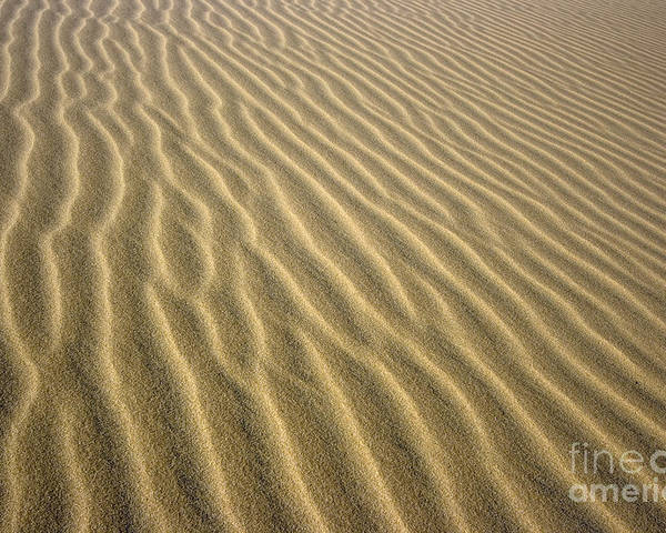 Texture Poster featuring the photograph Sandhills by MotHaiBaPhoto Prints