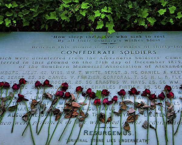 Grave Poster featuring the photograph Scatter Roses On My Grave by Steven Ainsworth
