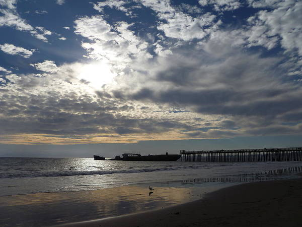 Seacliff Beach Poster featuring the photograph Seacliff Cement Ship Sunset by Amelia Racca