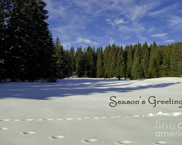 Winter Poster featuring the photograph Season's Greetings Austria Europe by Sabine Jacobs