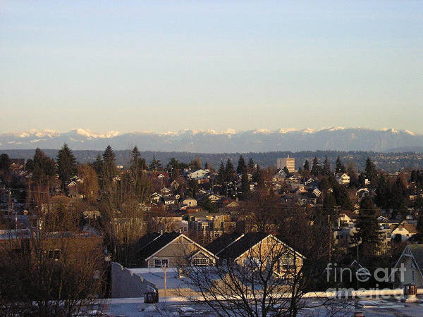 Urban Landscape Poster featuring the photograph Seattle Suburb In Winter by Silvie Kendall