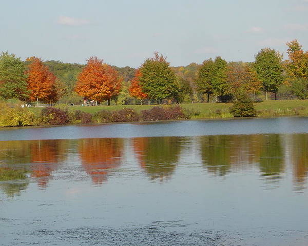 Photography Poster featuring the photograph Seven Lakes State Park Mi by Margrit Schlatter