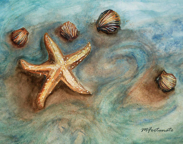 Fish Poster featuring the photograph Shells With Star by Margaret Fortunato