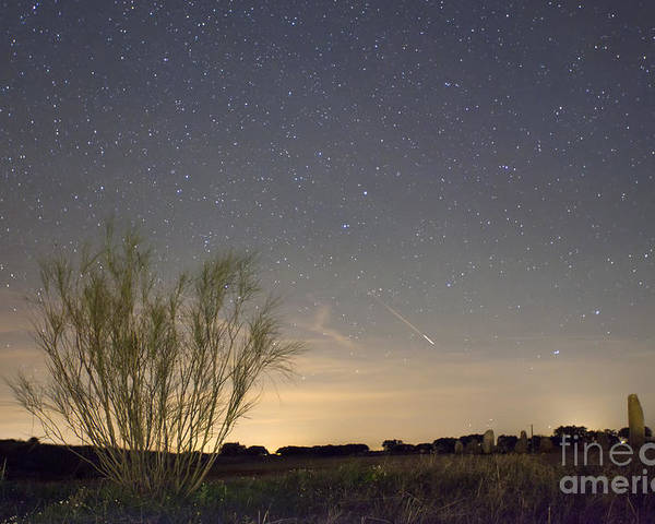 Dark Poster featuring the photograph Shooting Star by Andre Goncalves
