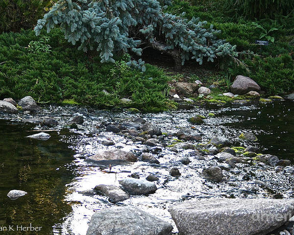 Outdoors Poster featuring the photograph Silver Stream by Susan Herber
