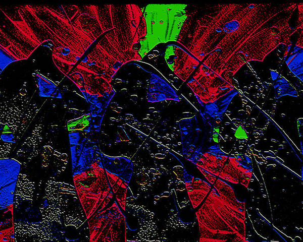 Singers Poster featuring the digital art Singers 3 by Karen Elzinga
