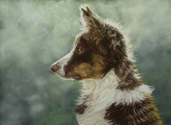 Dog Poster featuring the pastel Skye by Lorraine McFarland