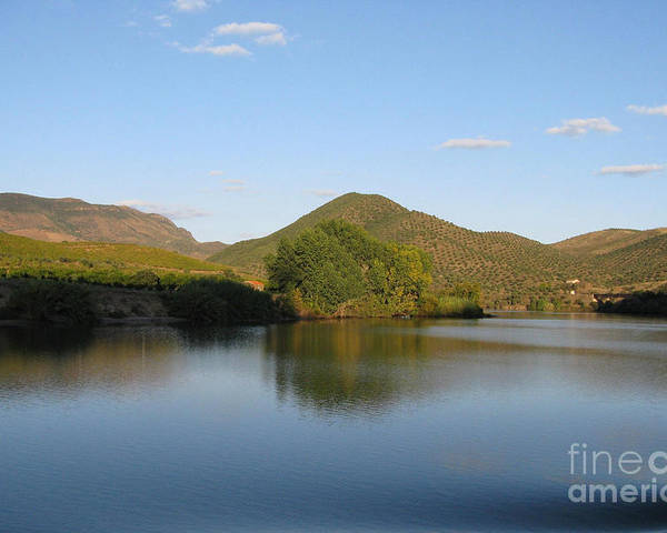 Nature Poster featuring the photograph Smooth Sailing On The Douro by Arlene Carmel