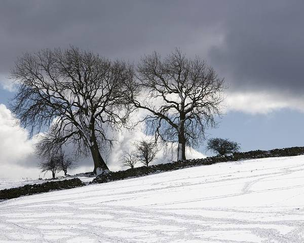Cloud Poster featuring the photograph Snowy Field, Weardale, County Durham by John Short