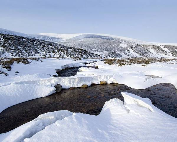 Countryside Poster featuring the photograph Snowy Landscape, Scotland by Duncan Shaw