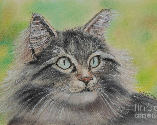 Cat Poster featuring the pastel Soft Kitty by Julie Brugh Riffey