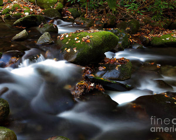Stream Poster featuring the photograph Soothing Waters by Gary Suddath