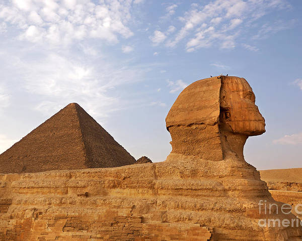 Africa Poster featuring the photograph Sphinx Of Giza by Jane Rix