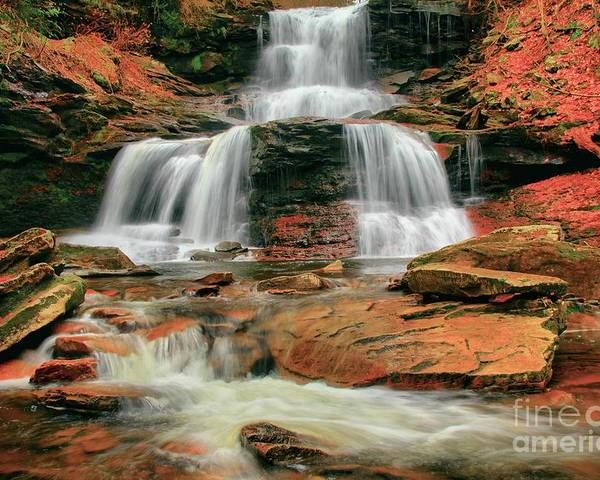Ricketts Glen Poster featuring the photograph Split Up The Middle by Adam Jewell
