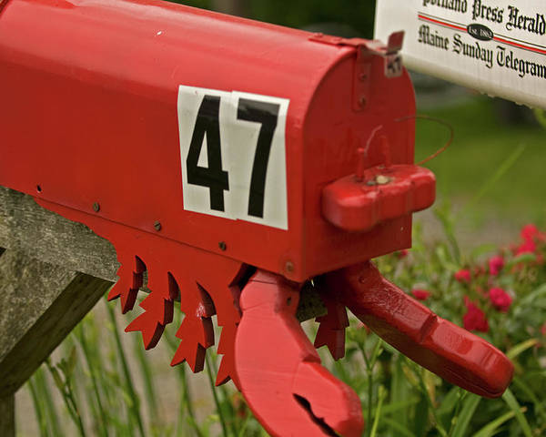 mid Coast Maine Poster featuring the photograph Sponge Bob's Mail Box by Paul Mangold