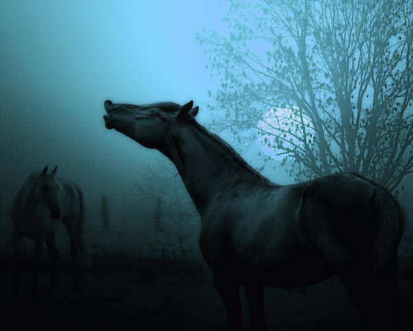 Horses Poster featuring the photograph Spring Breeze by Joachim G Pinkawa