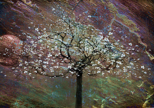 Tree Poster featuring the painting Spring Dreaming by Gray Artus